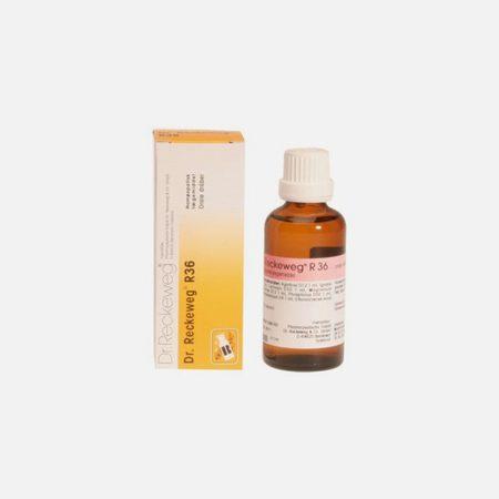R36 50ml – Nervosismo, Tiques, Espasmos – Dr. Reckeweg