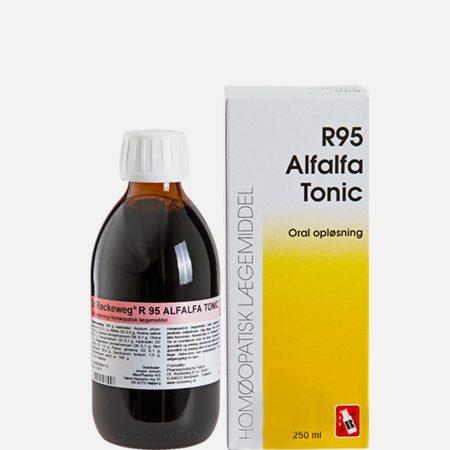 R95 Tónico, Revigorante Geral – 250 ml – Dr. Reckeweg