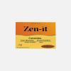 zen-it_fitozen