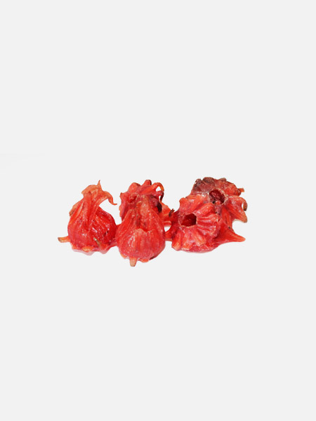 flor-hibiscos