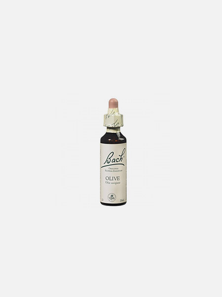 Olive - 20ml - Floral de Bach