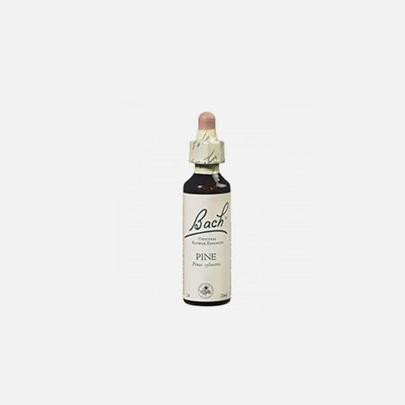 Pine – 20ml – Floral de Bach