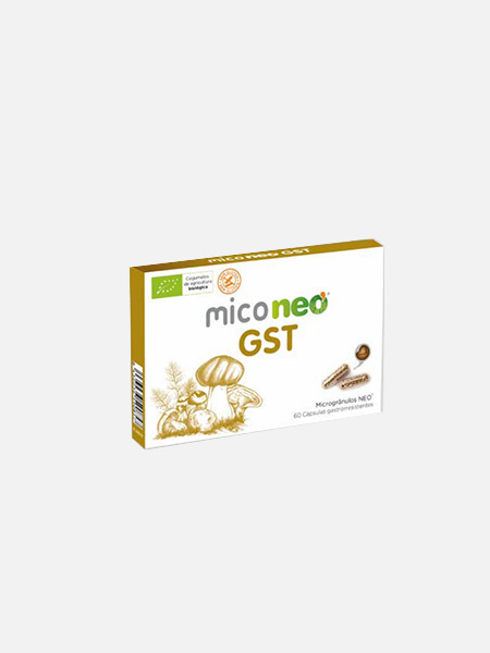 miconeo GST - nutridil