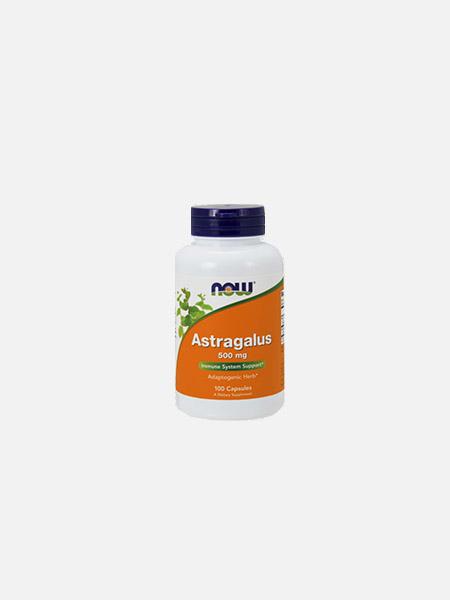 Astragalus - 100 cápsulas - Now