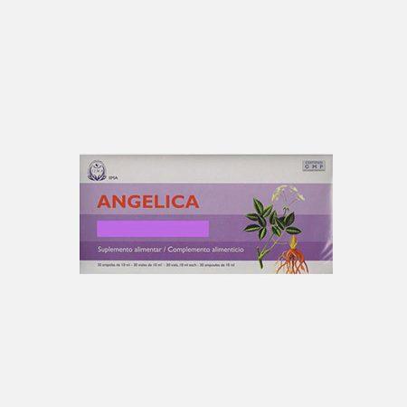 Angelica Sinensis – 30 ampolas – IIMA