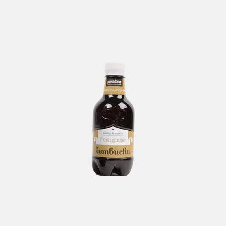 Kombucha Drink Fresh Gengibre Bio – 330ml – Novo Horizonte