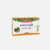 Rabalchofit Bio- 20 ampolas - Super Diet