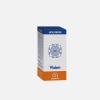 HoloRam Vision - 60 cápsulas - Equisalud