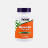 Boswellia Extract 500mg - 90 cápsulas  - Now