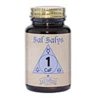 SAL SALYS-90 01 CaF 90comp.