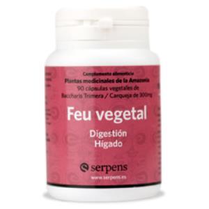 FEU VEGETAL digestion 90cap.
