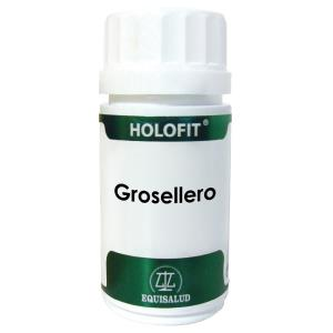 HOLOFIT GROSELLERO 60cap.