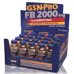 GSN-PRO FB-2000mg 20viales (carnitina) 30 ml