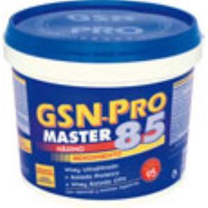 GSN-PRO MASTER 85 sabor vainilla 1Kg.